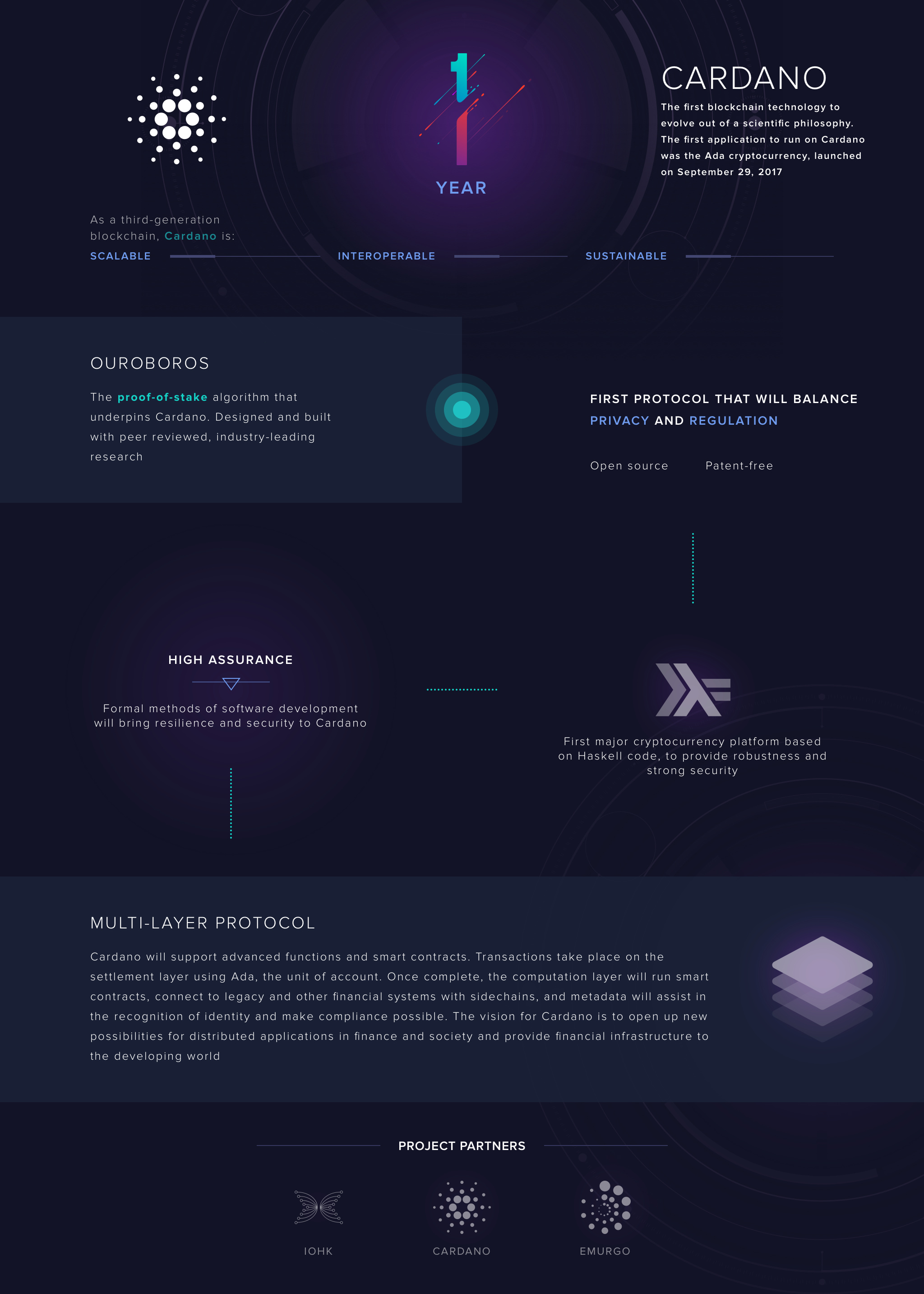 cardano-first-year-anniversary-infographic-series-0