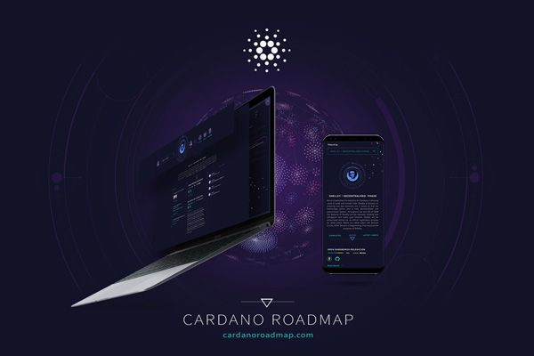 roadmap-new