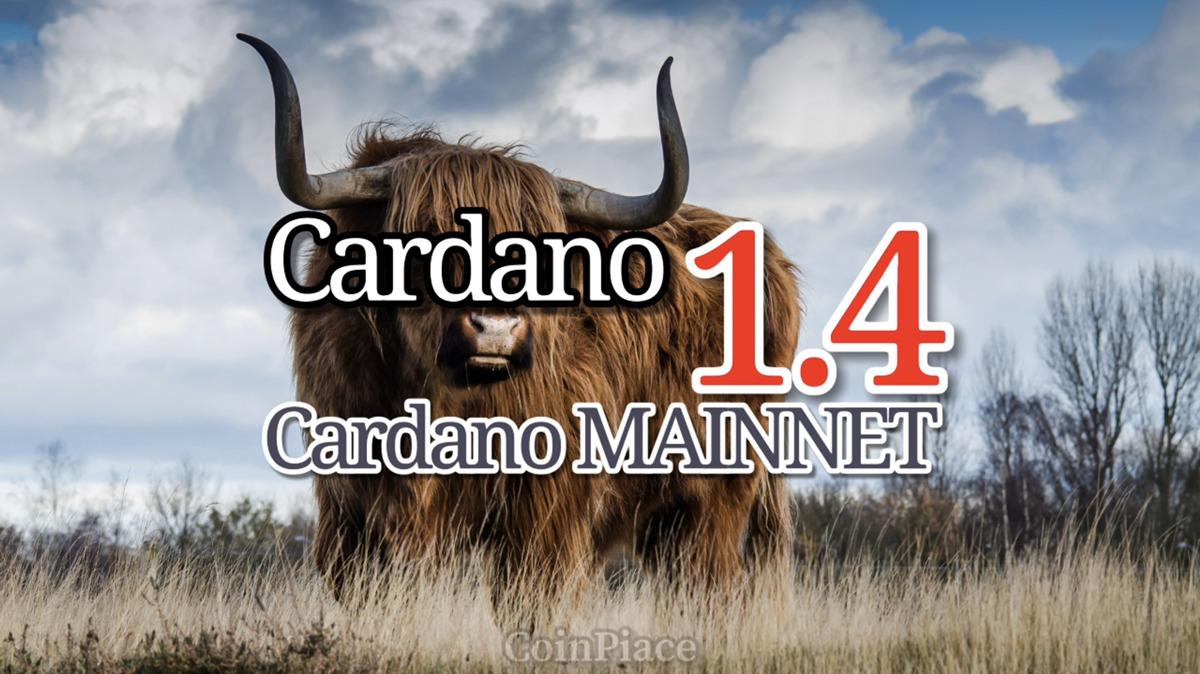 【アップデート】 Daedalus(ダイダロス) Cardano1.4を公開