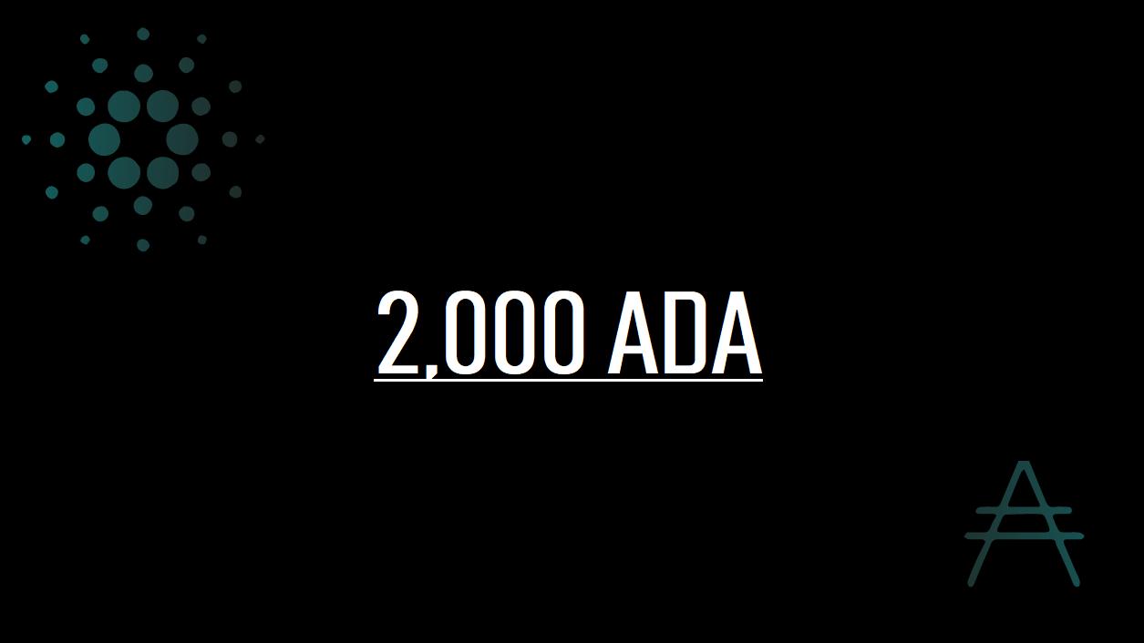 2000ADA-1-million-planning
