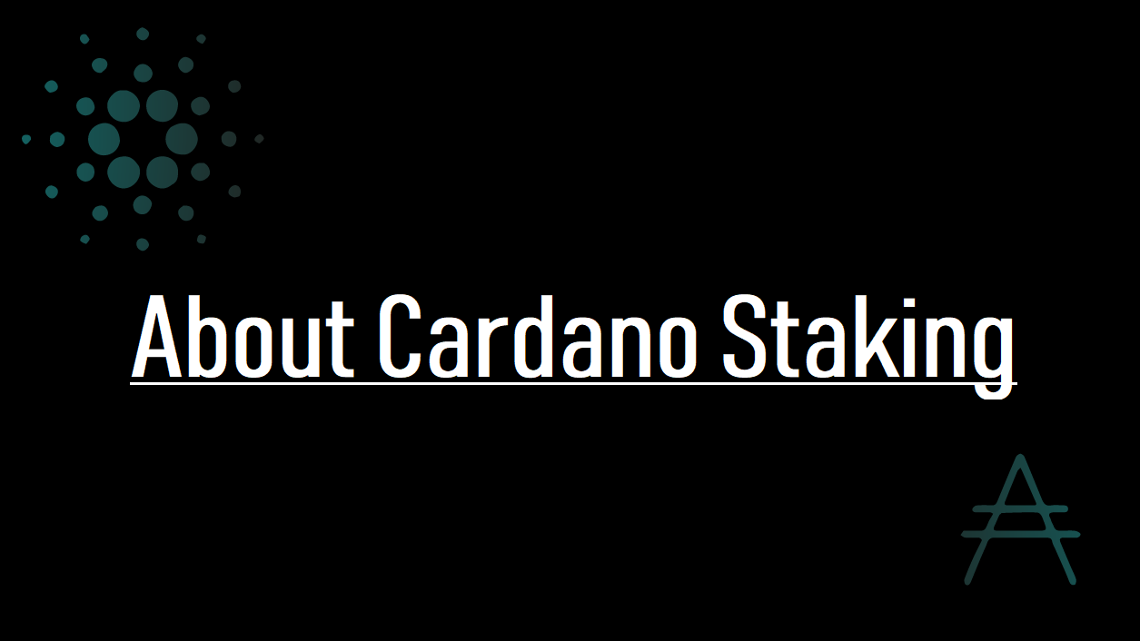 About Cardano Staking