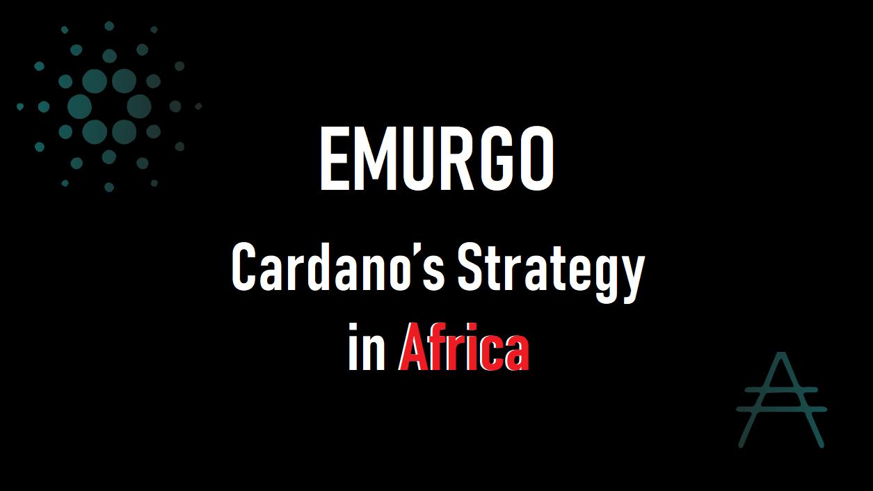 EMURGOブログ更新!アフリカにおけるカルダノの戦略とは?和訳文