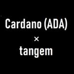 Tangem Notesとカルダノ(ADA)!IOHKサミットで手に入る模様!財団