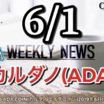 週刊 CARDANO ADA COIN(カルダノ エイダコイン)2019年6月1日号!