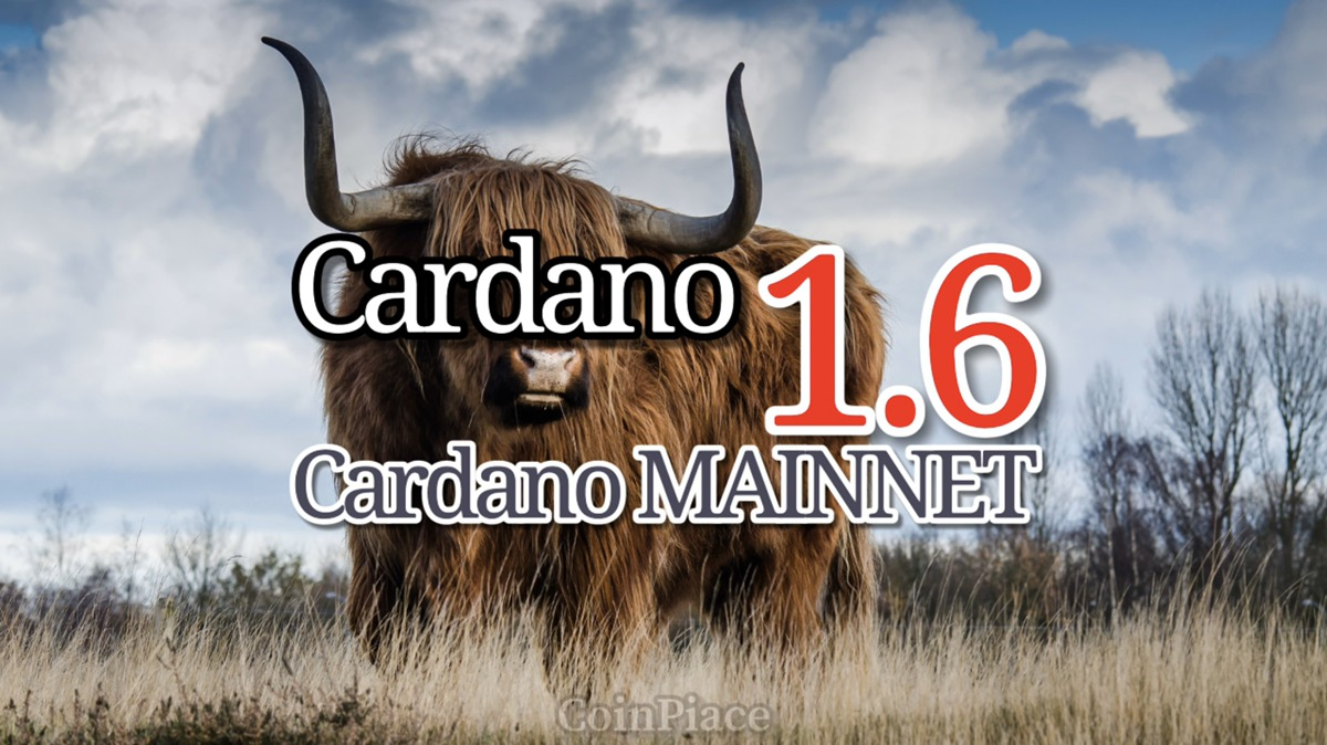 【アップデート】 Cardano 1.6&Daedalus(ダイダロス) 0.14.0