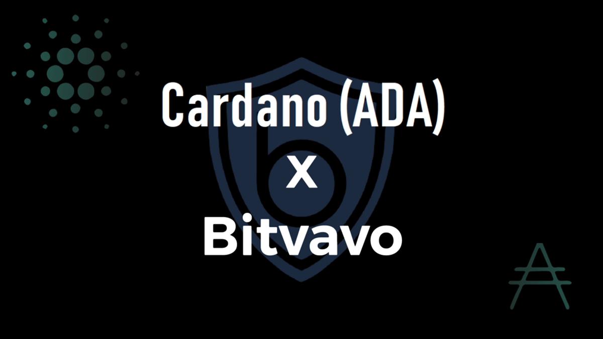 Bitvavo オランダの仮想通貨取引所にカルダノ(ADA)が上場!EUR建