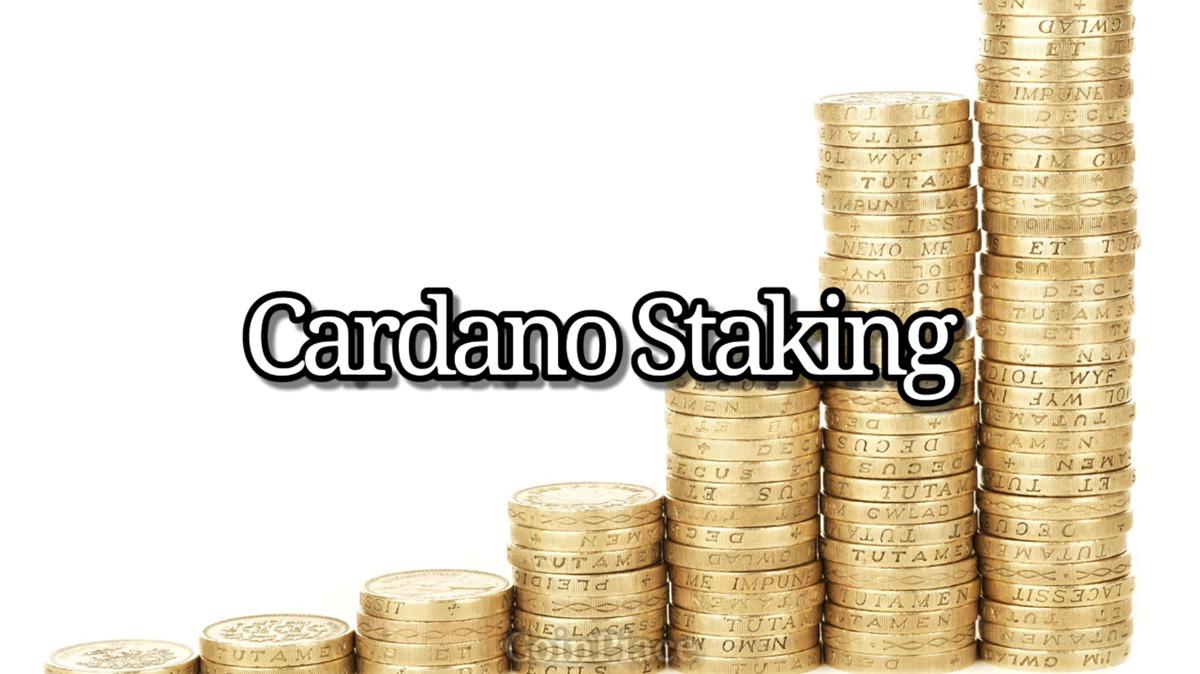 カルダノステーキングについて / About Cardano Staking
