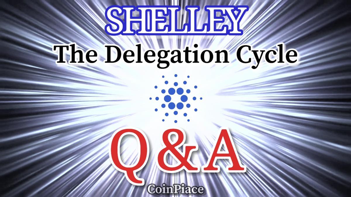 【Q&A】SHELLEYハードフォークの日程やよくある質問に公式回答!