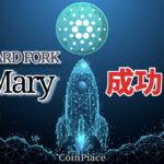 【祝】Maryハードフォークが成功!ネイティブトークンが使用可能